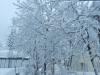 Schneefall 23. März 2014