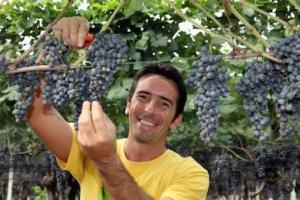 Wine and Dine mit Enrico Trapletti @ Andermatt   Uri   Schweiz
